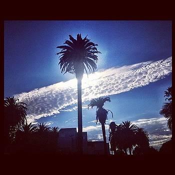 #sky #clouds #palmtree #venicebeach by Irina Liakh