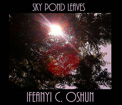 Sky Pond Leaves by Ifeanyi C Oshun