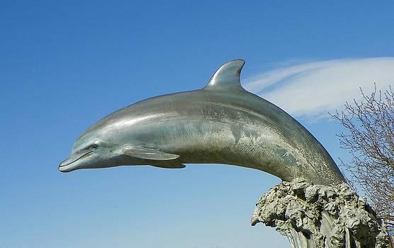 Sky splashing dolphin by Vicky Mowrer