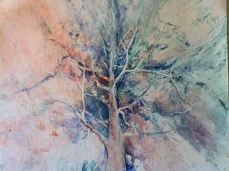 Sky Tree by Judy Osiowy