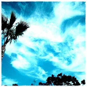 Eleigh Koonce - Skyblue