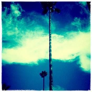 Eleigh Koonce - SkyBlue2