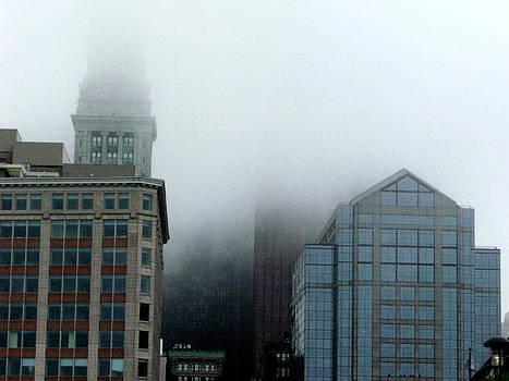 Skyline Fog 2 by Julia Jones
