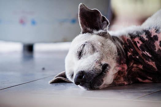 Sleep by Bubbers BB