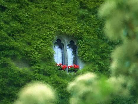 Sleeping Beautys Castle -- Dornroeschens Schloss by Arthur V Kuhrmeier