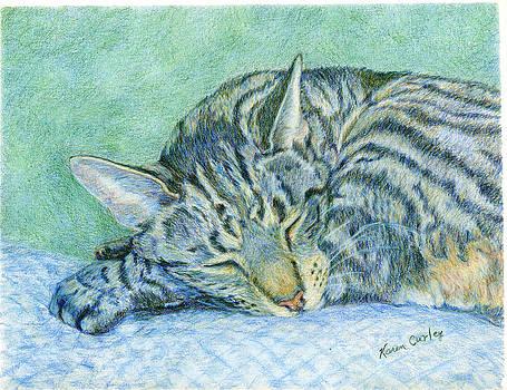 Sleeping Tabby Cat by Karen Curley