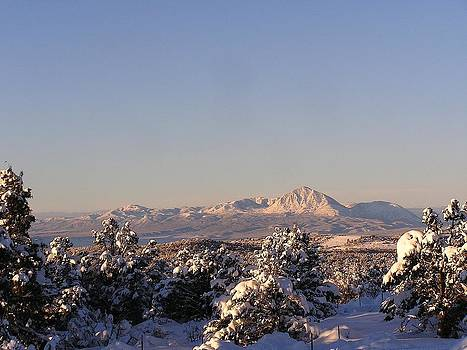 Sleeping Ute in Winter by FeVa  Fotos