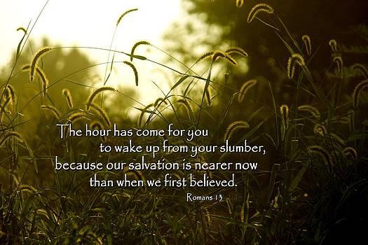 Slumber by Linda Fowler