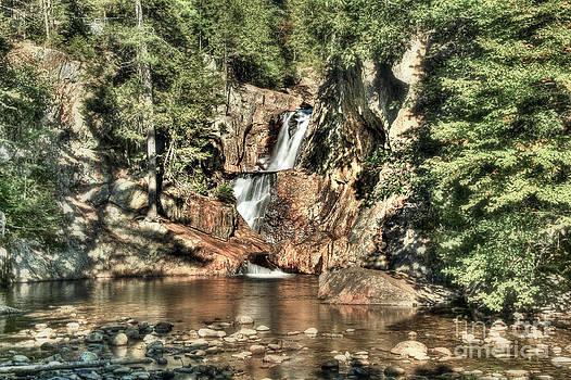 Brenda Giasson - Small Falls