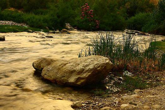 Small river by Adeeb Atwan