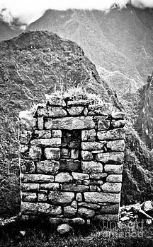 Darcy Michaelchuk - Small Wall