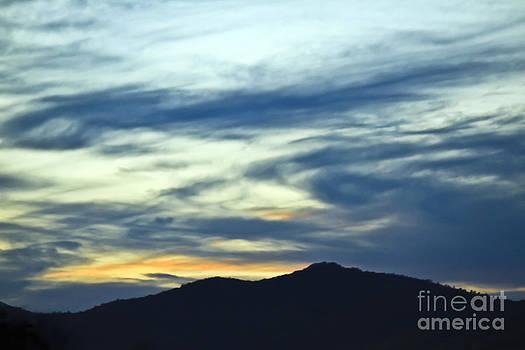 Brenda Giasson - Smokey Skys