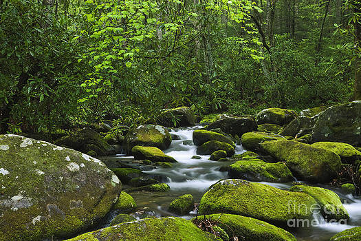 Dennis Flaherty and Photo Researchers - Smoky Mountains Waterfall