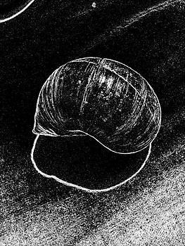 Drinka Mercep - Snail Shell No.9