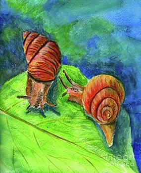 Ellen Miffitt - Snails