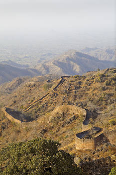 Kantilal Patel - Snake Wall