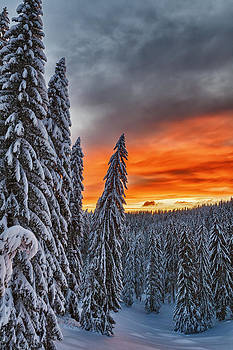 Snow and Sunrise by Evgeni Dinev