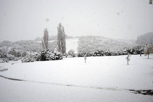 Rachael Shaw - Snow Field