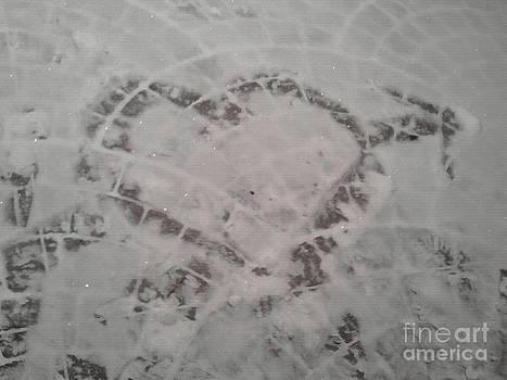 Snow Heart 2012 by Catherine Herbert
