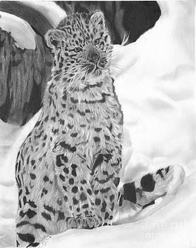 Christian Conner - Snow Leopard