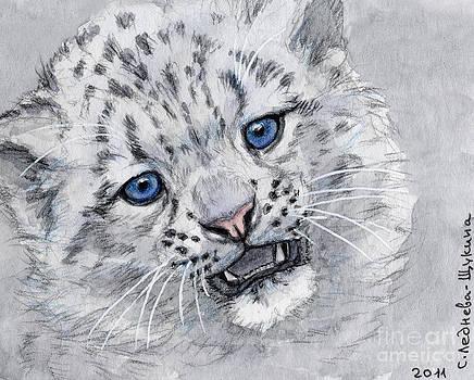 Snow Leopard Cub by Svetlana Ledneva-Schukina