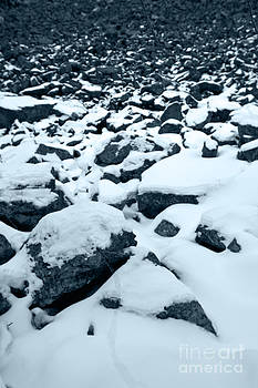 Snow Rocks by Bianca Collins