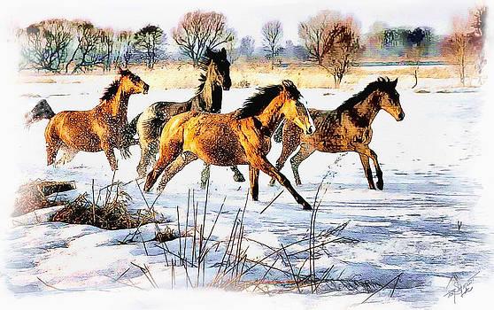 Snow Run by Tom Schmidt