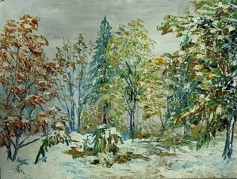 Snow by Stanislav Zhejbal