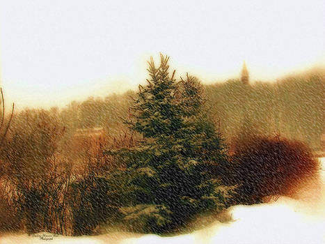 Darlene Bell - Snow Storm