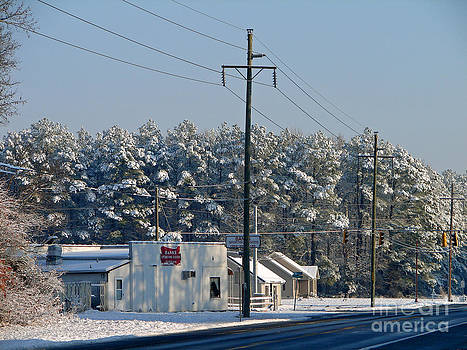 Snowed Capped  by Ronald Williamson