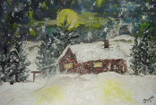 Snowed In by Fawn Whelahan