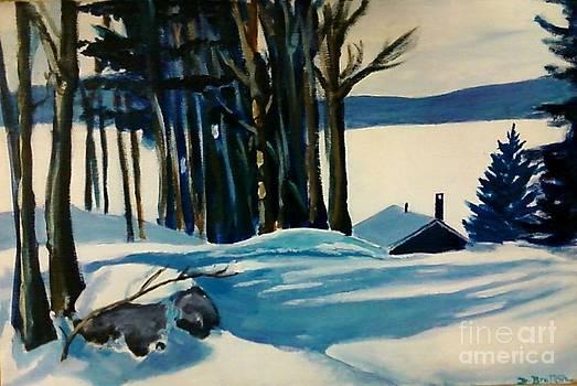 Snowed in Half Moon Lake NH by Debra Bretton Robinson