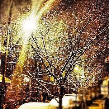 #snowfall On The #trees Feels Like by Kim Kay
