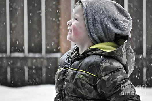 Gwyn Newcombe - Snowflake Thoughts