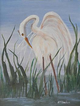 Snowy Egret by Heidi Patricio-Nadon