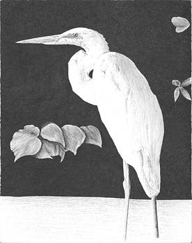 Snowy Egret by Reppard Powers