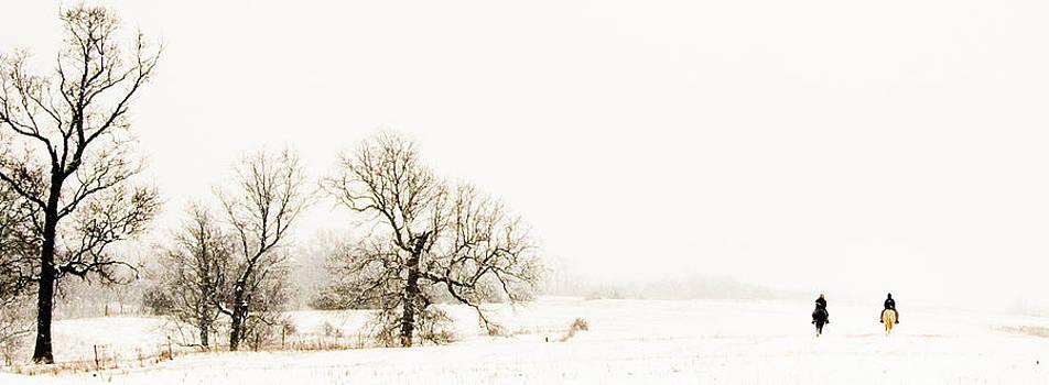Snowy Ride by Leslie Heemsbergen