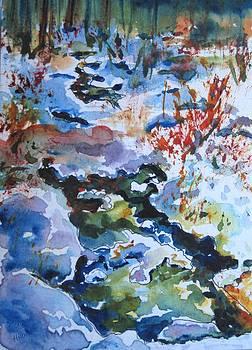 Snowy Stream by Corynne Hilbert