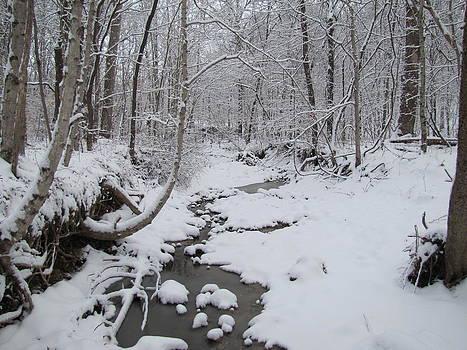 Snowy Stream by Jennifer Weaver
