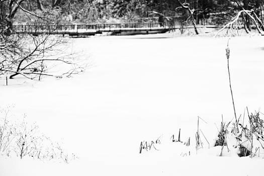 Nicole Neuefeind - Snowy white space