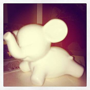 So Cute :] #babyelephant #porcelain by Orla O'Neill