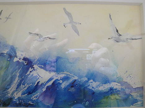 Soaring Sea Gulls by Evelyn Cassaday