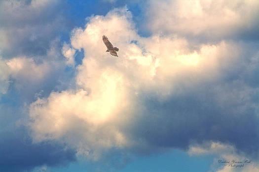 Darlene Bell - Soaring The Sky
