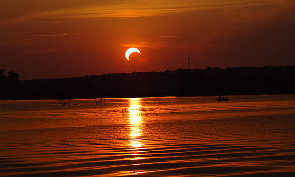 Solar Eclipse 2012 - Fort Worth Texas by Elizabeth Hart
