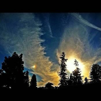 Solar Portal & Treeline by Todd Kelley