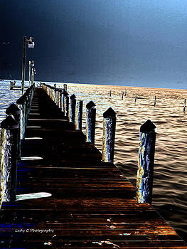Maureen Cunningham - Solarized Dock on the Bay