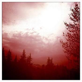 Soleil #sun  #trees #instalove by Ange Exile DuParadis