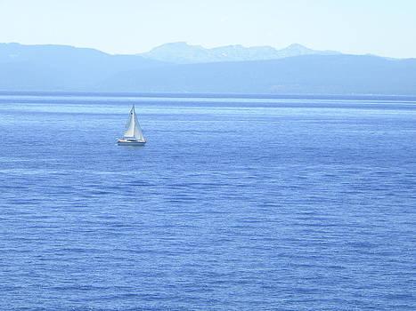 Frank Wilson - Solitary Sailing on Lake Tahoe
