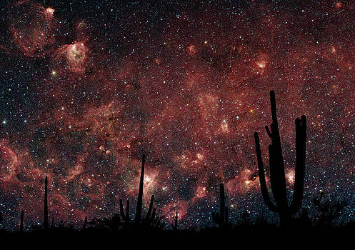 Sonoran Milkyway by Phil Degginger