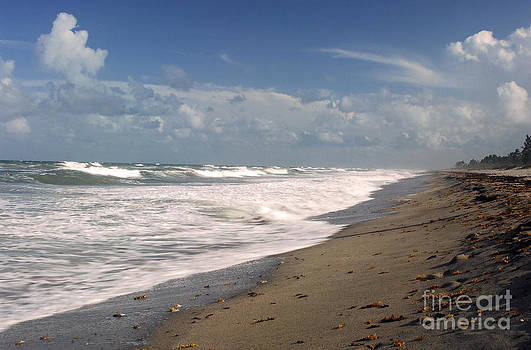 South Hobe Sound Beach by Richard Nickson